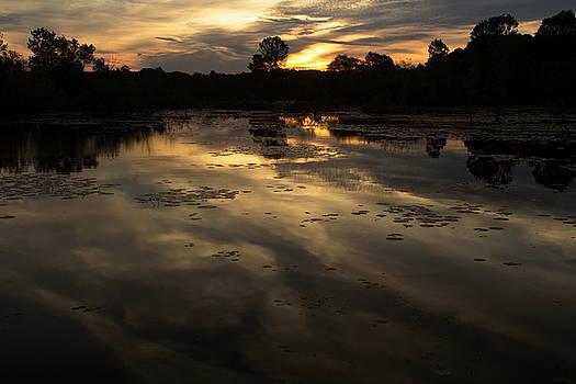 Sunrise Reflection by Amanda Kiplinger