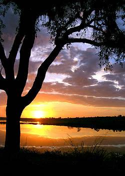 Sunrise Silhoette by Adele Moscaritolo