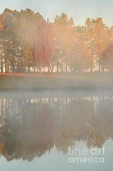 Sunrise Steam with Autumn Trees by Tamara Becker