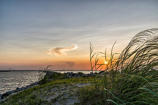 Sunset and Sea Oats by Gregg Southard