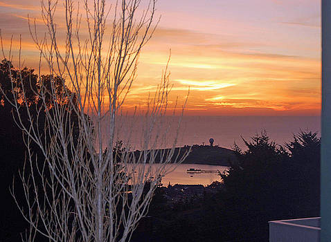 Sunset at Pillar Point by Carolyn Donnell