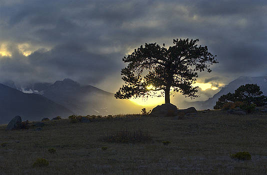 James Steele - Sunset at Rocky Mountain Park Co