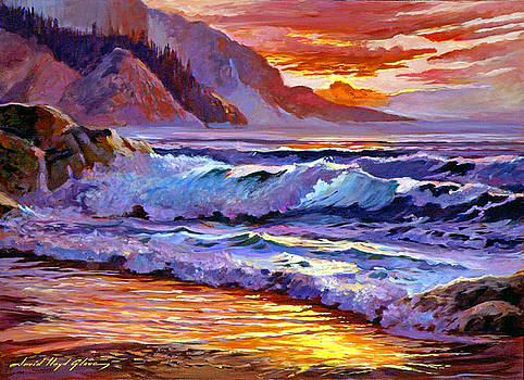 David Lloyd Glover - Sunset At Shipwreck Beach
