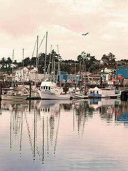 Sunset At The Marina by Diane Schuster