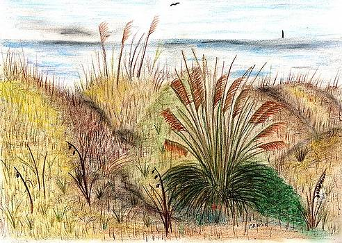 Sunset Beach Sea Side by Diane Frick