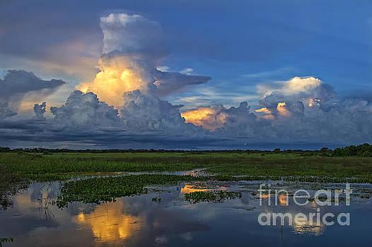 Sunset Blues.. by Nina Stavlund