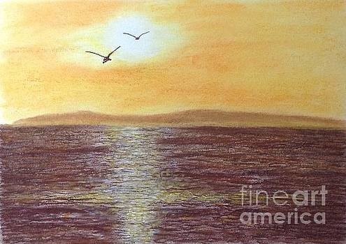 Sunset and Seagulls by Cybele Chaves