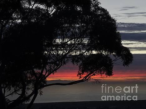 Sunset Hill by Matthew Hesser