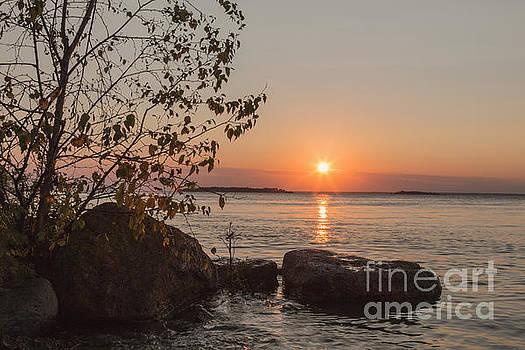 Sunset II by Margie Hurwich