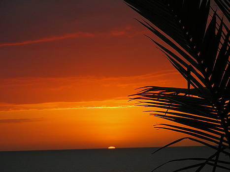 Sunset in Negril by Peter  McIntosh