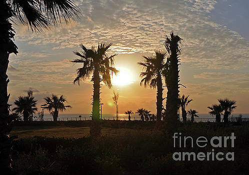 Sunset In Netanya 3 by Lydia Holly