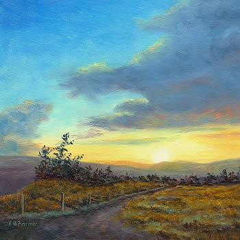 Sunset in Paradise by Elaine Farmer