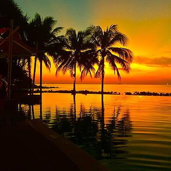 Sunset  by Dorota Nowak