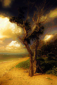 Sunset Kapaa by Dennis Begnoche