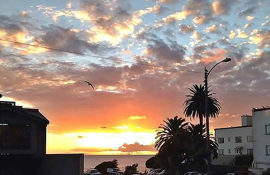 Sunset Laguna Oct 2015 by Dan Twyman