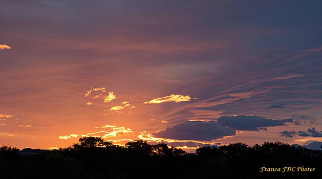 sunset Light  by Francoise Dugourd-Caput