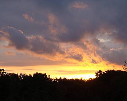 Sunset  by Martin Bellmann