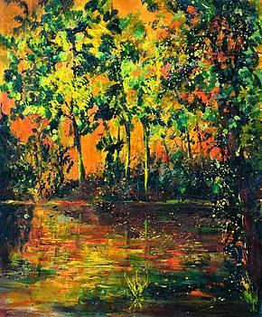 Sunset on a pond  by Pol Ledent