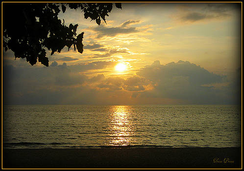 Sunset on Lake Michigan by Trina Prenzi