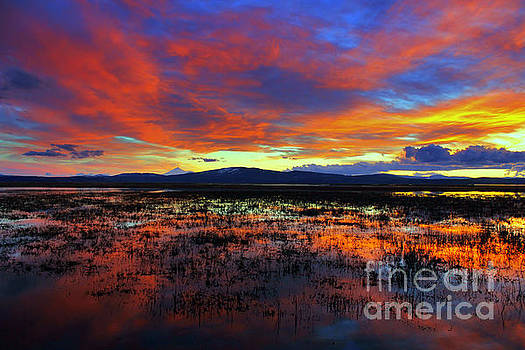 Sunset on  marshes  by Irina Hays