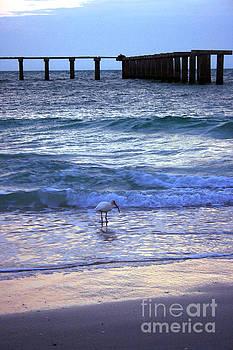 Sunset on the Gulf by Kathy DesJardins