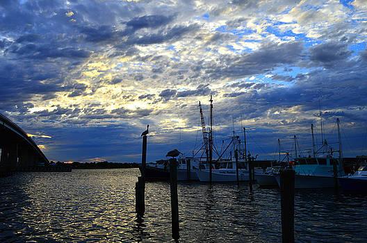 Sunset on the Halifax by Julianne Felton