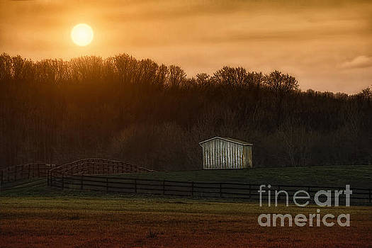 Sunset On The Ranch by Tom York Images