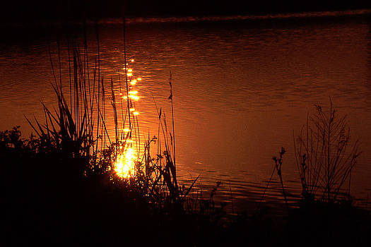 Sunset on the Water by Barry Shaffer