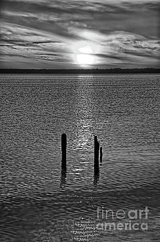 Dan Carmichael - Sunset Over Currituck Sound BW
