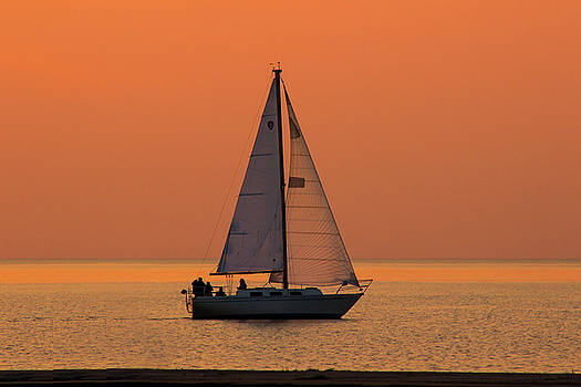 Sunset Sail by Tammy Chesney