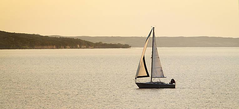 Sunset Sailing by Patrick Ziegler