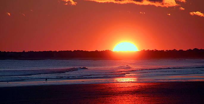 Rosanne Jordan - Sunset Shimmer at Kiawah Island