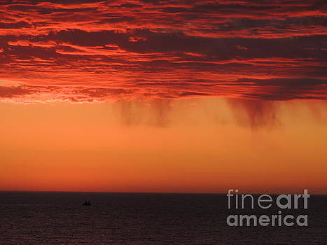 Sunset Showers by Linda Hollis