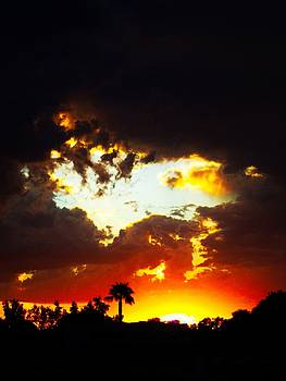 Sunset Silhouette by Nelson and Cheryl Strong
