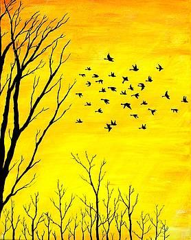 Sunset Silhouette by Sabrina Zbasnik