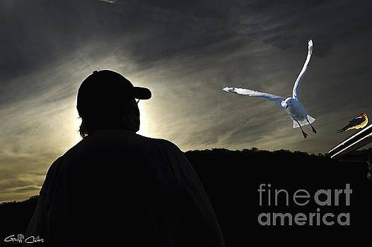 Sunset Sillouette. Original exclusive stock  photo art. by Geoff Childs