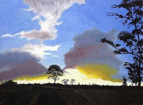 Sunset Spleandour by Carol De Bruyn
