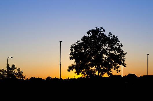 Sunset by Srdjan Fesovic