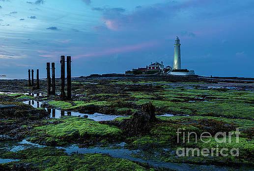 Sunset. St Marys Lighthouse. by John Cox