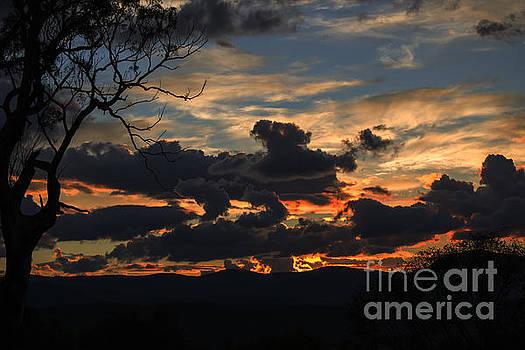 Sunset Study 3 by Angela DeFrias