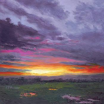 Sunset V by Elaine Farmer
