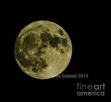 Super Moon Close Up by Marianne Kuzimski