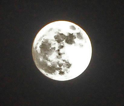 Super Moon November 2016 by Jay Milo