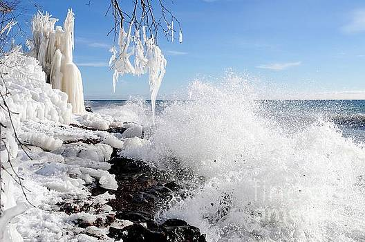 Superior Winter Day by Sandra Updyke