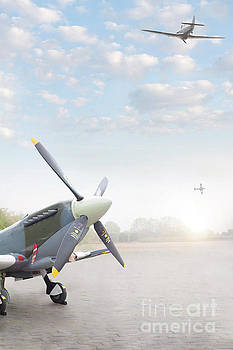 Supermarine Spitfires by Lee Avison
