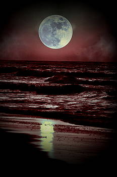 Emily Stauring - Supermoon Over the Ocean