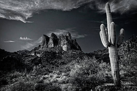 Superstition Wilderness in Black and White  by Saija Lehtonen