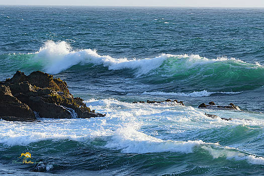 Surf and Rock by Jim Thompson