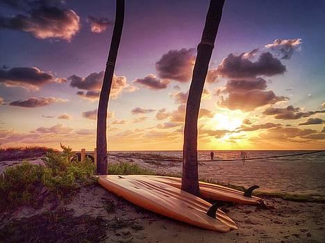 Surf Beach by Stella Oliver