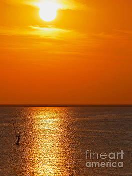 Nick  Biemans - Surfer during sunset